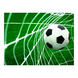 Fototapet - Goal!