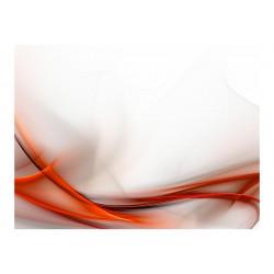 Fototapet - Elegant orange...