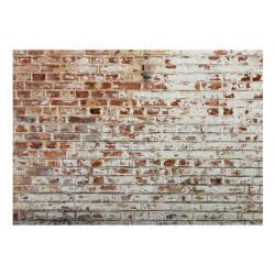 Fototapet - Walls of Memory