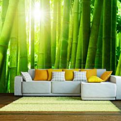 Fototapet - Sol og bambus