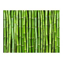 Fototapet - Bamboo væg