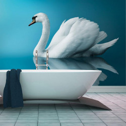 Fototapet - swan - reflection