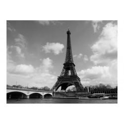 Fototapet - Seine and...