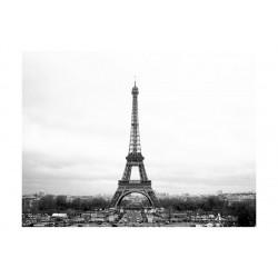 Fototapet - Paris: sort og...