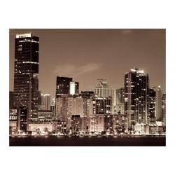 Fototapet - Nattelivet i Miami