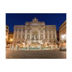 Fototapet - Trevi Fountain...