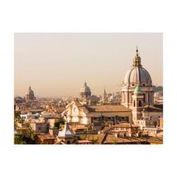 Fototapet - Rome - bird's...