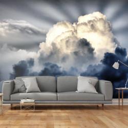 Fototapet - Rays på himlen