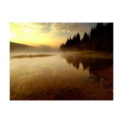 Fototapet - Skov og sø