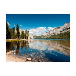 Fototapet - Tenaya Lake -...