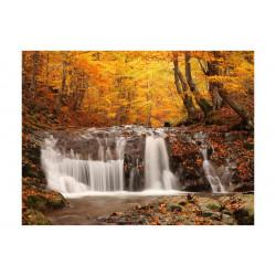 Fototapet - Autumn...