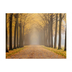 Fototapet - Journey to the...