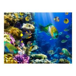 Fototapet - Underwater paradis