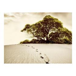 Fototapet - Træ i ørkenen