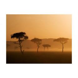 Fototapet - Massai Mara