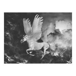 Fototapet - Pegasus på vej...