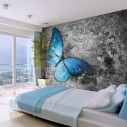 Fototapet - Blue butterfly