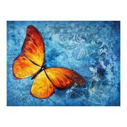 Fototapet - Fiery butterfly