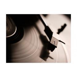 Fototapet - Gramophone and...