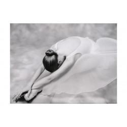 Fototapet - photo: ballerina
