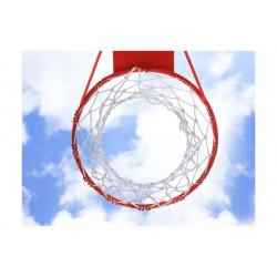 Fototapet - Basketball