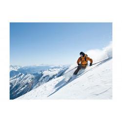 Fototapet - Ski