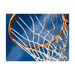 Fototapet - sport - basketball