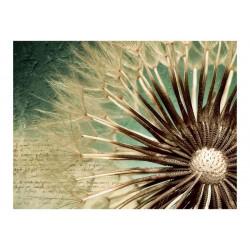Fototapet - Focus on dandelion
