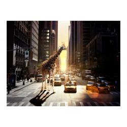 Fototapet - Giraf i storbyen