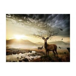 Fototapet - Hjortene ved...