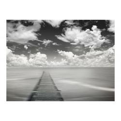 Fototapet - Vejen til frihed