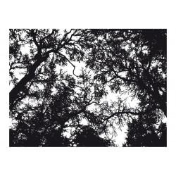 Fototapet - Bleak forest