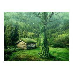 Fototapet - Green afsondrethed