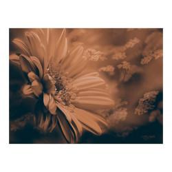 Fototapet - Gerbera i bronze