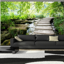 Fototapet - Forest path