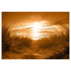 Fototapet - beach (sepia)