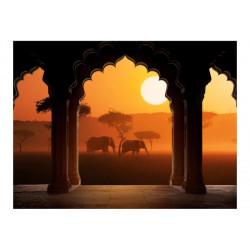 Fototapet - Hear Africa