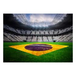 Fototapet - Brazilian stadium