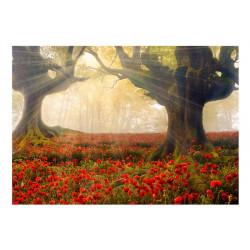 Fototapet - Morning among...