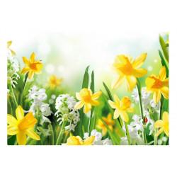 Fototapet - Spring walk