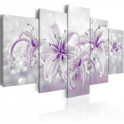 Billede - Purple Graces