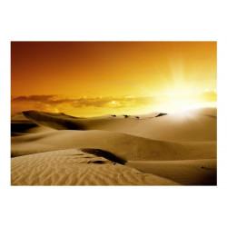 Fototapet - March of camels