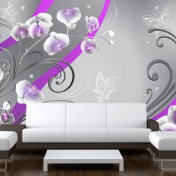 Fototapet - Purple orchids...