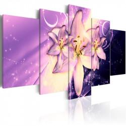 Billede - Purple Galaxy