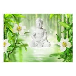 Fototapet - Buddha and nature