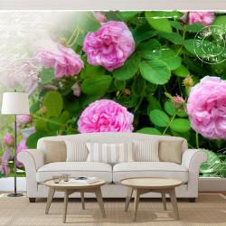 Fototapet - Summer garden