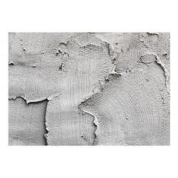 Fototapet - Concrete...