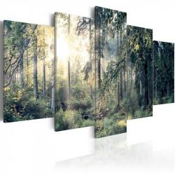 Billede - Fairytale Landscape