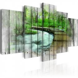Billede - Forest of Secrets
