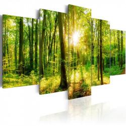 Billede - Forest Tale